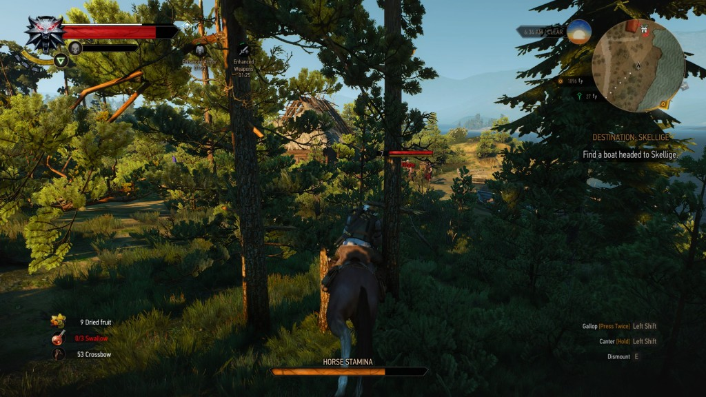 dumb horse