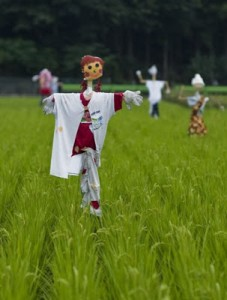 Funny_Scarecrows_6