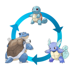 A squirtle becomes a wartortle, a wartortle becomes blastoise, and when an egg is produced it's a squirtle. There is no evolution taking place here.