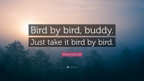 """Bird by bird, buddy. Just take it bird by bird."""