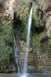 En Gedi. David's Waterfall.