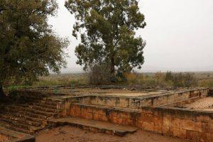 Tel Dan altar.