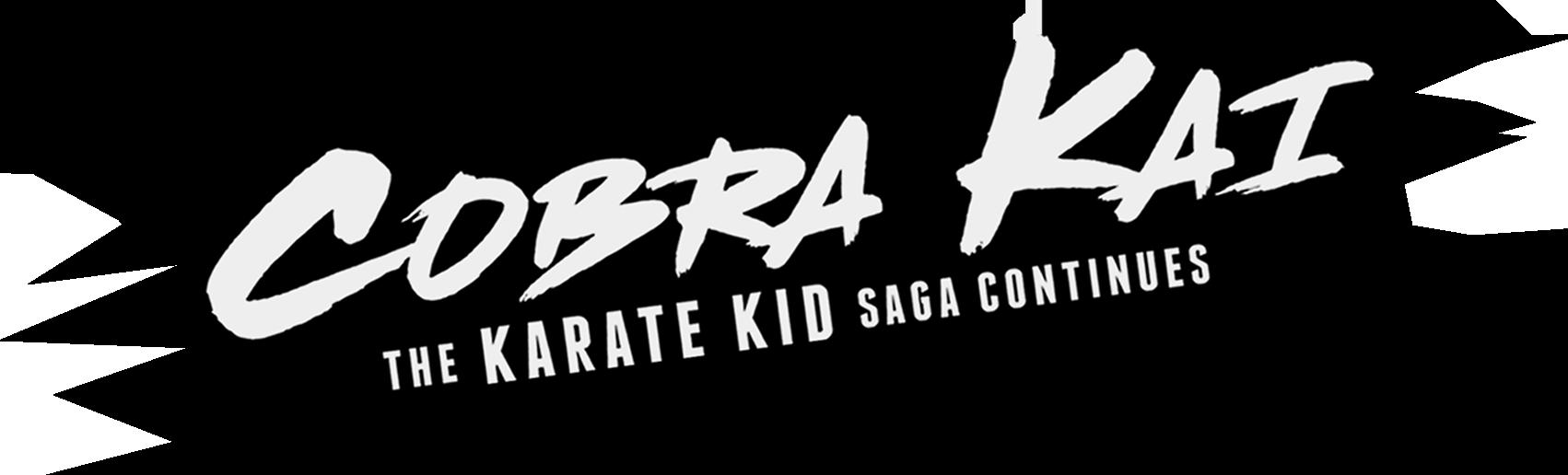 Review - Cobra Kai: The Karate Kid Saga Continues - Geeks ...